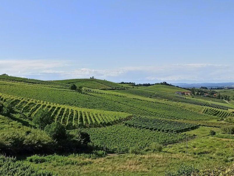 Territorio Monferrato